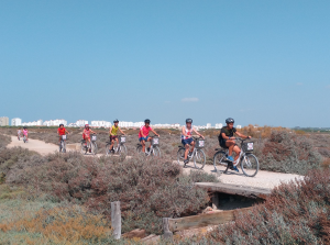 Alquiler de bicicletas en El Parque de los Toruños en El Puerto de Santa María