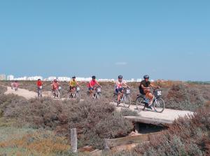 Ruta interpretativa guiada en bicicleta